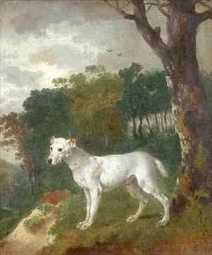 Thomas Gainsborough - Bumper a Bull Terrier