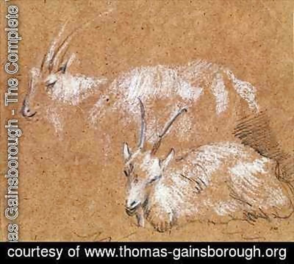 Thomas Gainsborough - Study of Goats