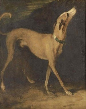 A greyhound in a landscape
