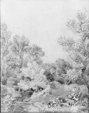 Thomas Gainsborough - Study of a track through a wooded landscape