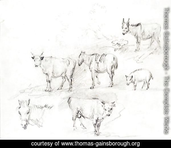 Study Of Horses, Cows, A Donkey And A Pig