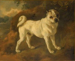 Thomas Gainsborough - A Pug