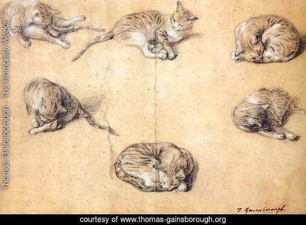 Six studies of a cat 1765-70