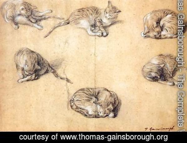 Thomas Gainsborough - Six studies of a cat 1765-70