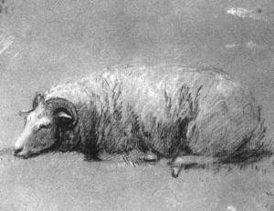 Thomas Gainsborough - Study of a Sheep 1757-59
